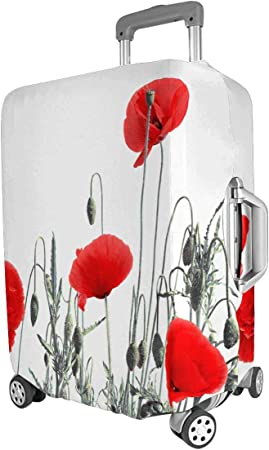 wonderful poppies on the cover of travel holder