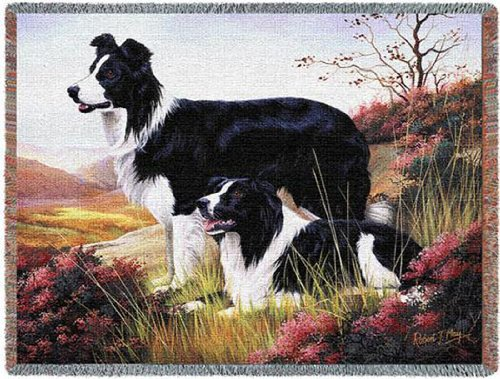 Border Collie Throw<br> 53 by 70-Inch