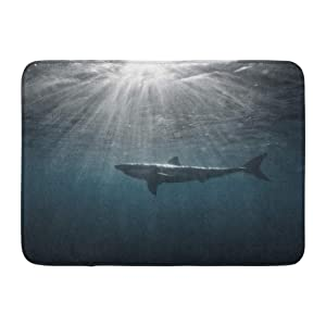 "Emvency Bath Mat Australia Cage Great White Shark in Blue Ocean Underwater Photography Predator Hunting Near Water Africa Bathroom Decor Rug 16"" x 24"""