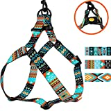 CollarDirect Adjustable Dog Harness Tribal Pattern Step-in Small Medium Large, Comfort Harness for Dogs Puppy Outdoor Walking (Pattern 2, Medium)