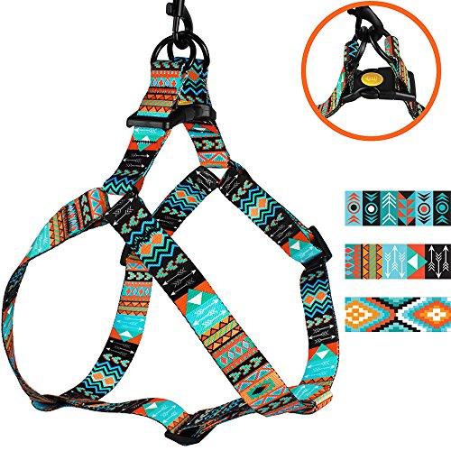 CollarDirect Adjustable Dog Harness Tribal Pattern Step-in Small Medium Large, Comfort Harness for Dogs Puppy Outdoor Walking (Pattern 2, Small)