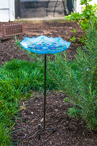 "Evergreen Garden Peacock Glass Bird Bath Bowl with Metal Stake - 11""L x 11""W x 26.75""H"