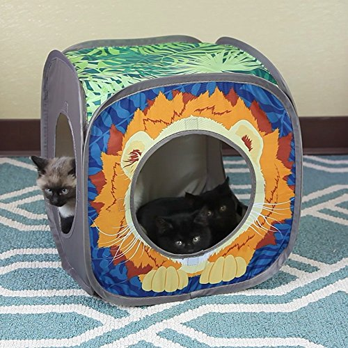 Kitty City Jungle Cat Cube Combo, Collapsible Cat Cube, Cat Bed, Tunnel, Cat Toys 4
