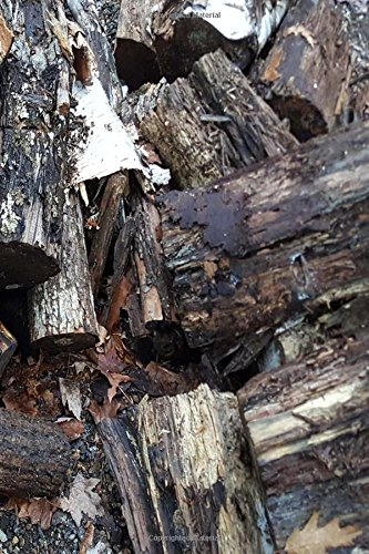Download Journal Fallen Woodpile Split Logs: (Notebook, Diary, Blank Book) (Photo Cover Journals Notebooks Diaries) pdf epub