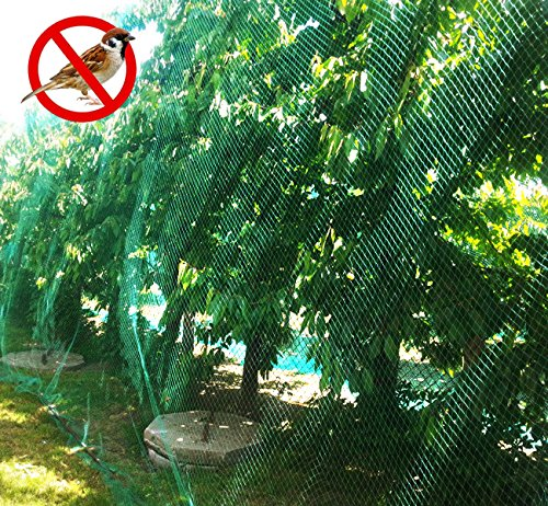 Senneny Bird Netting, 33Ft x 13Ft Anti-Bird Netting 100 Pcs Nylon Cable Ties, Green Garden Netting Protecting Plants Fruit Trees from Rodents Birds Deer by Senneny (Image #4)