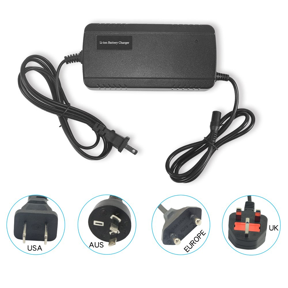 Junstar Lithium Li-ion Battery Charger Electric Bike Battery Charger Universal Charger for Electric Bicycle Ebike Charger with DC Plug(for 48 V Battery)