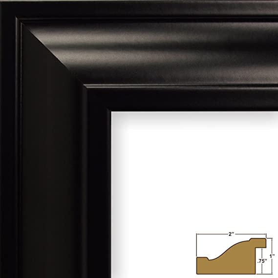 Craig Frames fw2bk 20 by 30-Inch Picture Frame, Smooth Finish, 0.765 ...