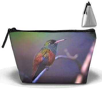 0da4e868c194 Amazon.com : Animal Hummingbirds Pencil Pen Case Portable ...