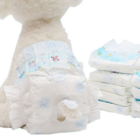 10 Piezas Pañales para mascotas Pantalones fisiológicos para perros Pantalones fisiológicos para gatos Pantalones de higiene