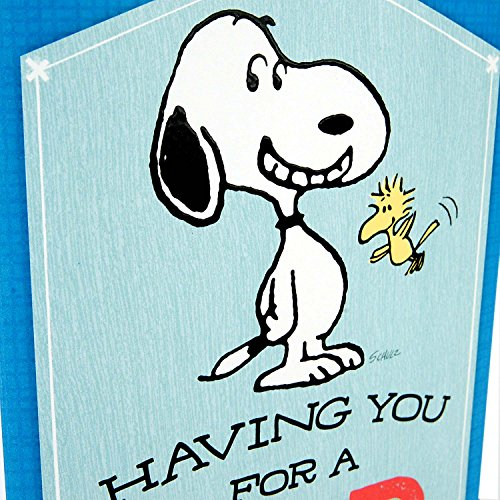 Hallmark Peanuts Greeting Card for Dad (Snoopy & Woodstock), Plays