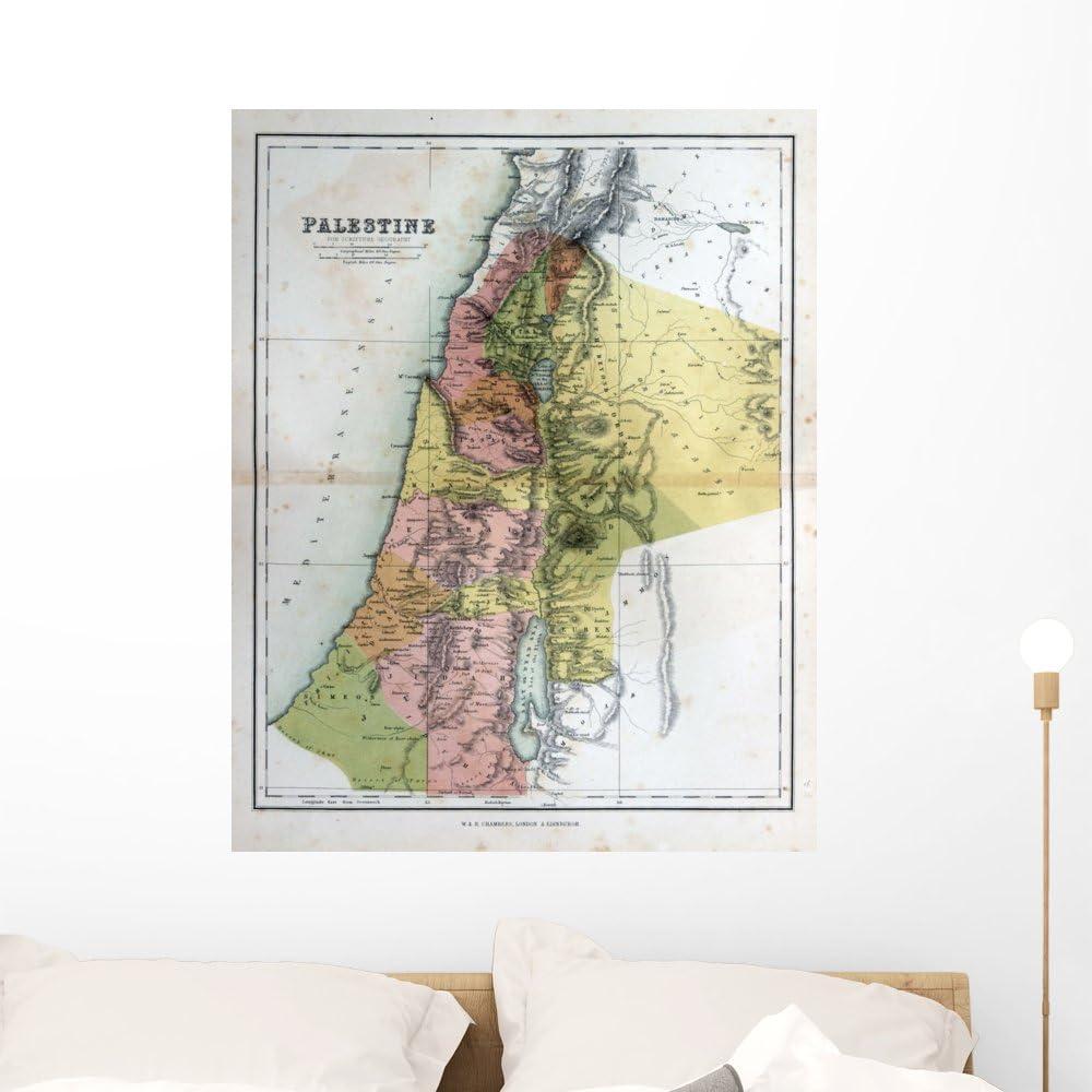 Amazon.com: Wallmonkeys Old Map Palestine 1870 Wall Mural ...