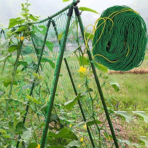 Gartennetz f/ür Bohnen gr/ün Kunststoff-Pflanzennetz Kletterpflanzen Rankgitter Obst Gem/üse