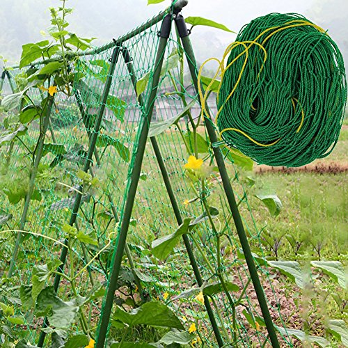millet16zjh Garden Nylon Netting Trellis Net Vegetables Bean Plants Climbing Grow Supporting - Green
