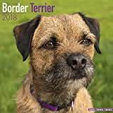 Border Terrier Calendar 2018 - Dog Breed Calendar - Premium Wall Calendar 2017-2018