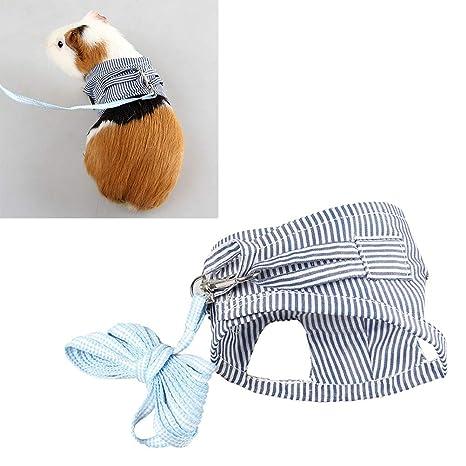 Balacoo - Arnés y Correa de algodón para Mascotas pequeñas, diseño ...