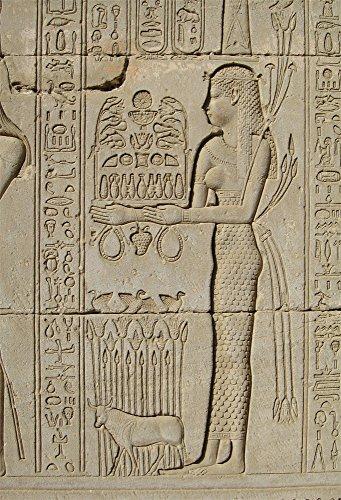 Aofoto 3X5ft Ancient Egyptian Mural Backdrops Egypt Totem Photo Shoot Background Worship Religious Fresco Faith Egypt Culture Travel Photography Studio Props Kid Artistic Portrait Digital Video Drop