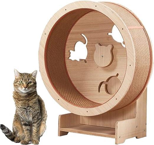 DYYTR Rueda para Correr para Gatos, Muebles para Mascotas, Marco De Escalada para Gatos Arena para Gatos Muebles para Gatos Rueda para Trepar para Gatos Cinta para Correr para Gatos: Amazon.es: Hogar