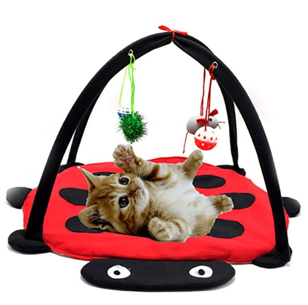 Skyseen Cat Toy, Ladybug Pattern Cat Play Mat Activity Pet Kitten Padded Bed with 4 Hanging Toy