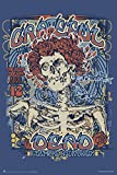 (24x36) Grateful Dead (Fillmore) Music Poster Print