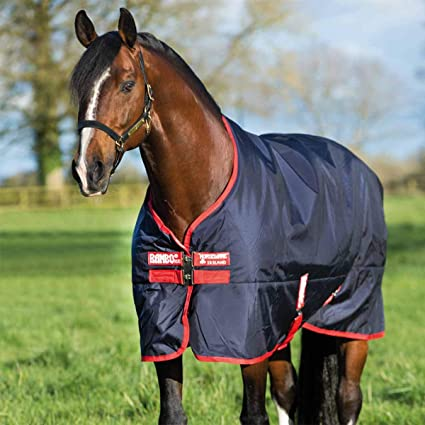 Covalliero Horse Blanket rugbe Classic Fleece Horse Rug Transport Blanket