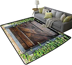 Rustic Decor Contemporary Area Rugs Small Spanish Style Dark Stained Wood Door Secret Garden with Grated Window Art Picture Place to Rest Brown Green, 6'x 7'(180x210cm)