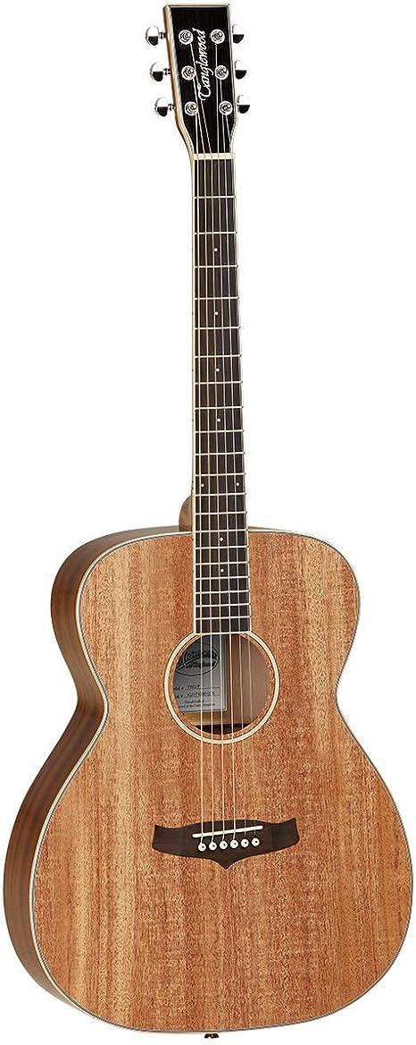 Tanglewood Union TWU F - Guitarra acústica: Amazon.es ...