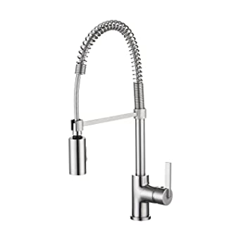 Enzo Rodi ERF7209251AP 10 Modern Commercial Kitchen Faucet With Pull Down  Sprayer,Stainless