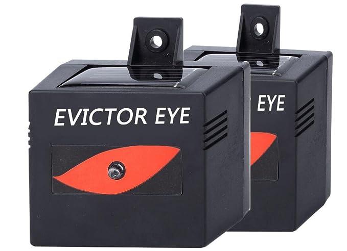Amazon.com: MTL Predator Control Luz, ahuyentador de ...