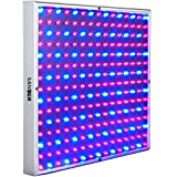 SANSUN LED Grow Light for Red Blue Indoor Plant Lights and Hydroponic Full Spectrum 15W Plant Grow Light Review