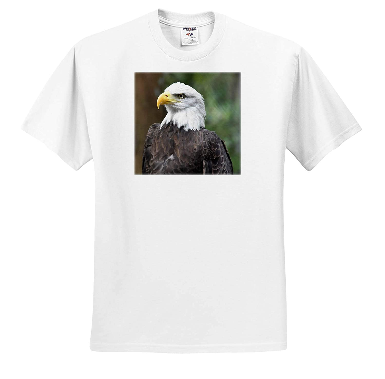 T-Shirts 3dRose Susans Zoo Crew Animal Bald Eagle Bird Looking Left