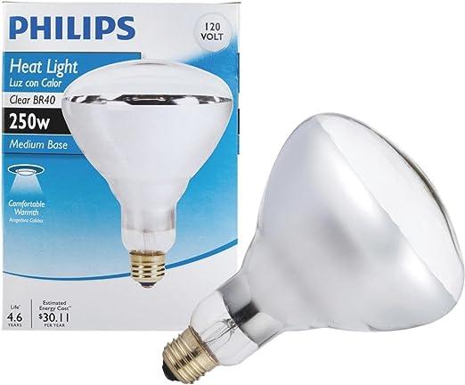 Amazon.com: Phillips 416743 BR40 Foco de luz tipo proyector ...