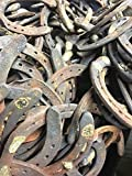 5PCS AUTHENTIC CERTIFIED HORSESHOE USED RUSTIC PREWORN CRAFT HORSE SHOE GOOD LUCK
