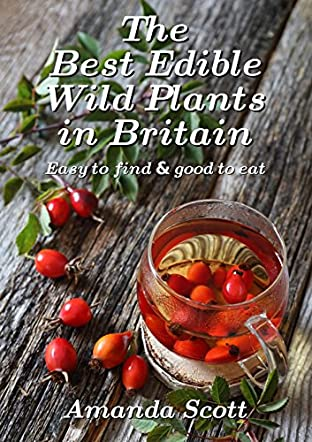 The Best Edible Wild Plants in Britain
