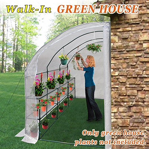 Strong Camel New Large Walk-In Wall Greenhouse 10x5x7'H w 3 tiers/6 Shelves Gardening (White)
