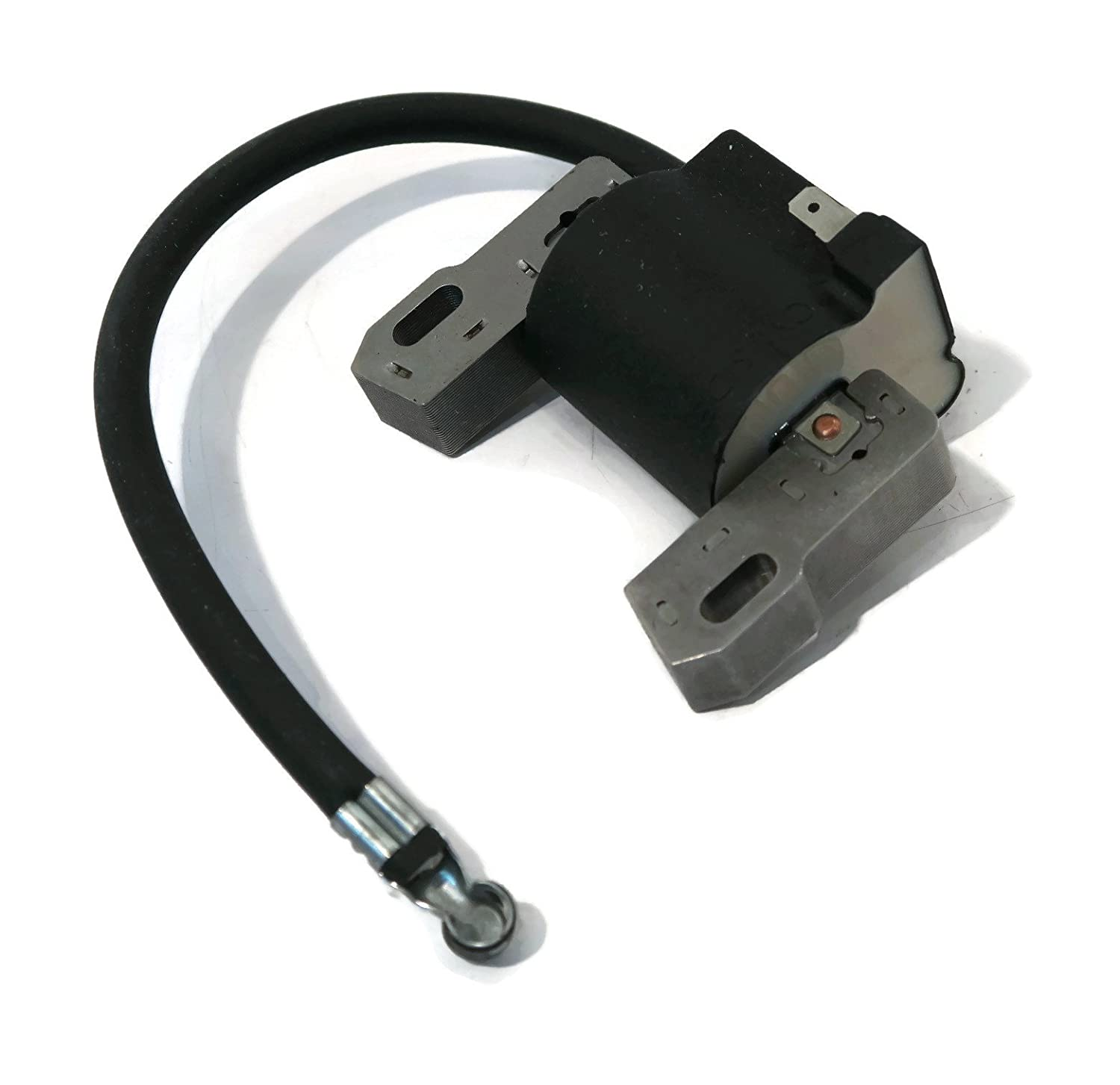 Amazon.com: Replacement Electronic Ignition Coil Solid State Module for  Briggs and Stratton 492341 : Garden & Outdoor