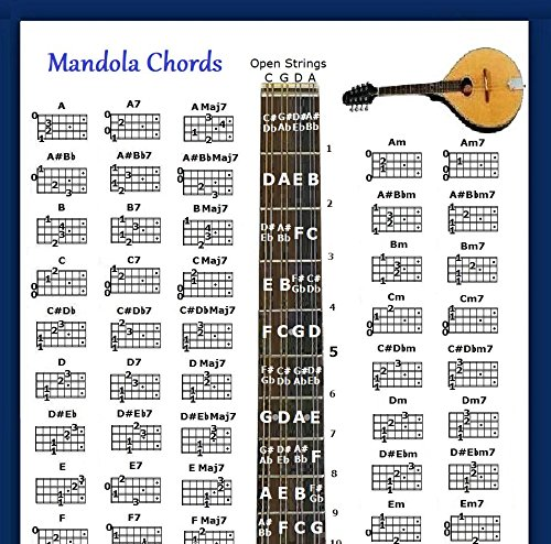 Compare Price Mandolin Chord Chart Poster On Statementsltd