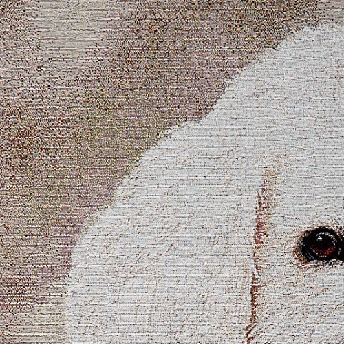 Pure Country 1150-LS Bichon Frise Pet Blanket, Canine on Beige Background, 54 by 54-Inch by Pure Country (Image #1)