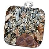 3dRose TDSwhite – Rock Photos - Rock Garden Assortment - 8x8 Potholder (phl_281917_1)