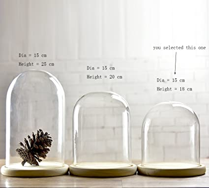 Campanas de cristal con forma de cúpula con bandejas de madera con diá