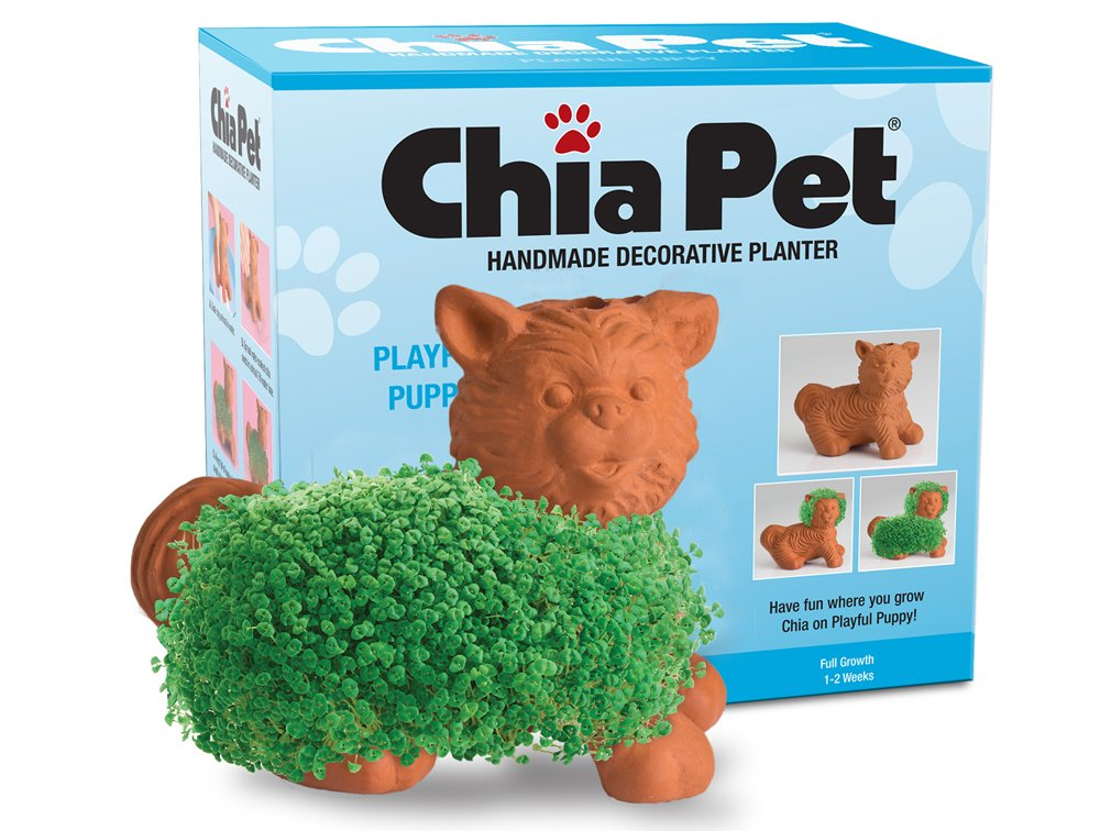 Chia Pet Playful Puppy, Decorative Pottery Planter, Easy to Do and Fun to Grow, Novelty Gift, Perfect for Any Occasion by Chia (Image #1)