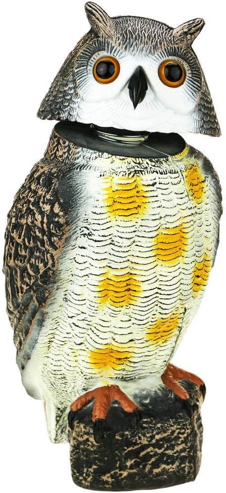 PrimeMatik - Ahuyentador de Aves Tipo Estatua búho con Ojos Reflectantes 40cm Macho: Amazon.es: Electrónica