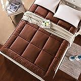 FDCVS Thicken Breathable Comfortable Mattress, Student [dorm room] Tatami mats Mattress-F 100x200cm(39x79inch)