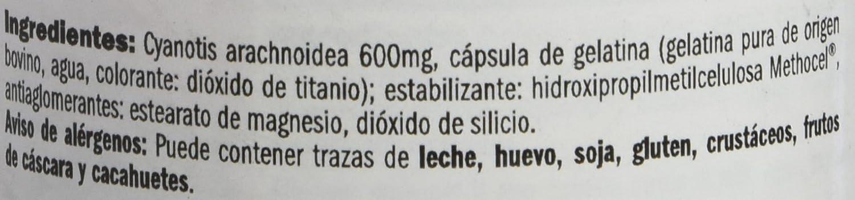 Amix 8594159535763 - Beta Ecdyx Estimulante, 64.8 gr.: Amazon.es: Salud y cuidado personal
