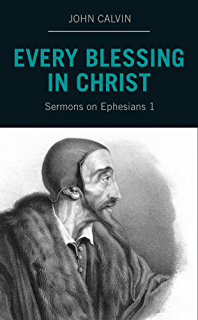 John calvins sermons on 1 timothy kindle edition by ray van neste every blessing in christ sermons on ephesians 1 fandeluxe Choice Image