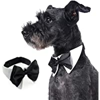 Dog Cat Bowtie Collar, Pet Adjustable Formal Neckwear, Neckties for Small/Medium/Large Dog and Cat, Pet Dress-up Clothes, for Wedding, Party and Birthday (M)