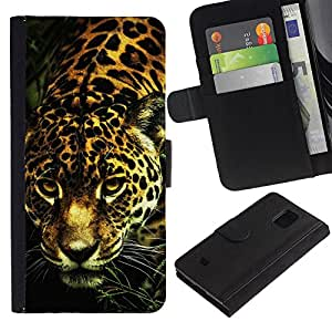 KingStore / Leather Etui en cuir / Samsung Galaxy S5 Mini, SM-G800 / Big Motif de la fourrure de chat animaux