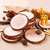 "Natural Wood Slices 30 Pcs 2.4""-2.8"" Craft Wood kit Unfinished Predrilled with Hole Wooden Circles Great for Arts and Crafts Christmas Ornaments DIY Crafts"