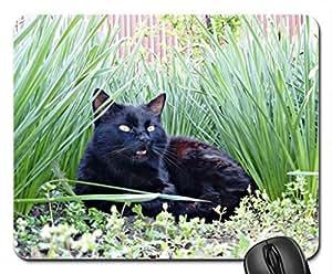 black cat Cute Cool Decorative Design Animal Cat Mousepad Rainbow Designs
