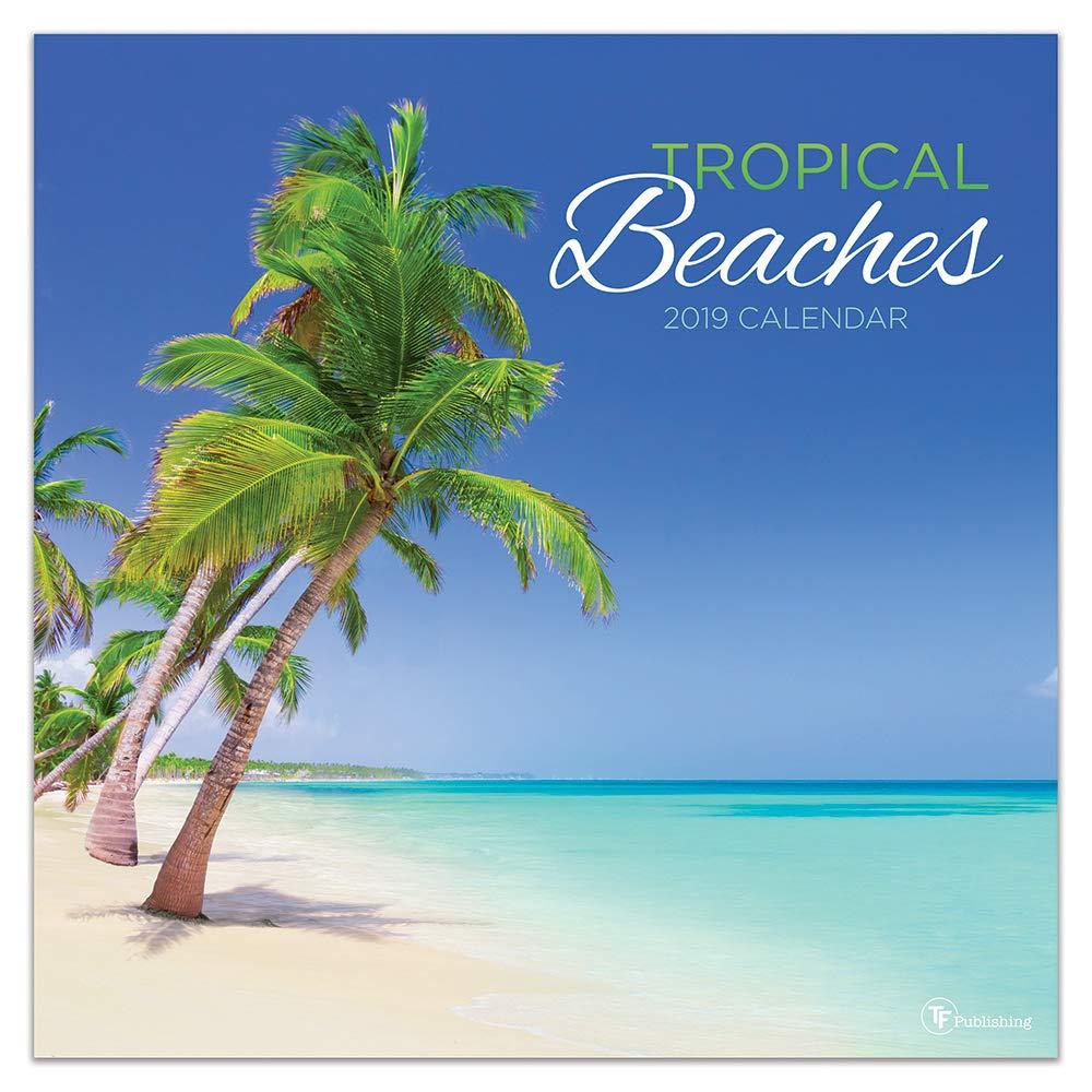 tropical playas 2019calendario
