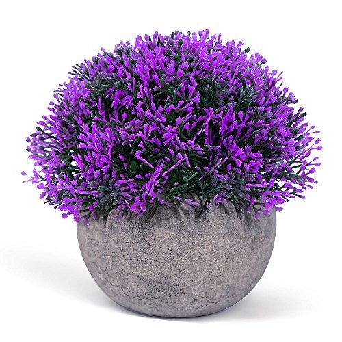Vangold Lifelike Artificial Plants Plastic Grass Plants Pots Home/Office Decor (Purple-1 pcs)